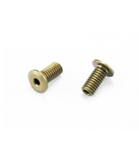 DOWNSTOP SCREW FRONT S988 (2U)