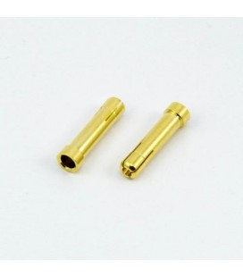 BULLET 4.0MM MALE TO 5.0MM FEMALE (2U)
