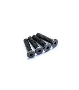 SLIM HEAD SCREW M3x14mm (Black / 4pcs)