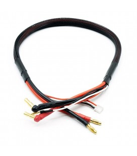 2S HIGH CURRENT CHARGE CABLE 4/5MM 12AWG